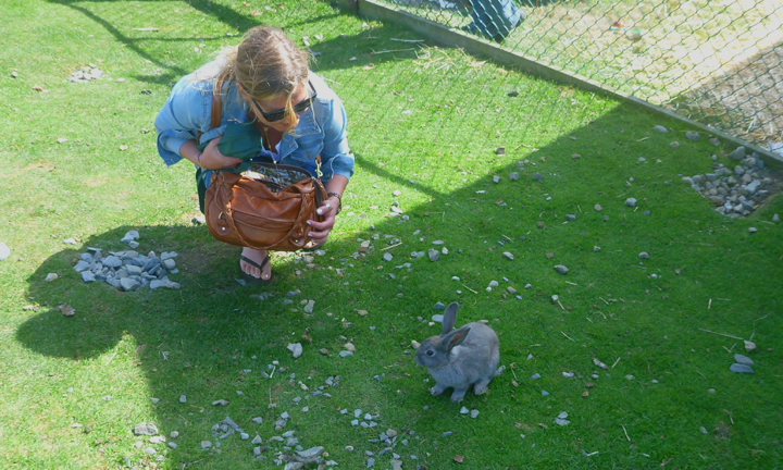 me and rabbit